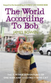 The world according to Bob av James Bowen (Heftet)