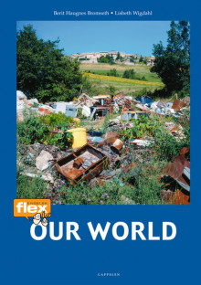 Flex Our World av Berit Haugnes Bromseth (Heftet)