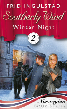 Winter night av Frid Ingulstad (Ebok)