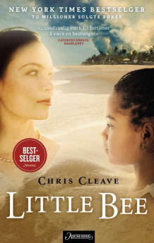 Little Bee av Chris Cleave (Ebok)