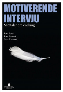 Motiverende intervju av Tom Barth, Tore Børtveit og Peter Prescott (Heftet)