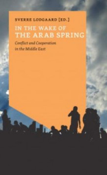 In the wake of the Arab spring av Sverre Lodgaard (Heftet)