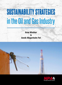 Sustainability strategies in the oil and gas industry av Arne Winther og Annik Magerholm Fet (Innbundet)