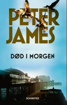 Død i morgen av Peter James (Ebok)