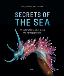 Secrets of the sea av Erling Svensen og Bjørn Gulliksen (Innbundet)